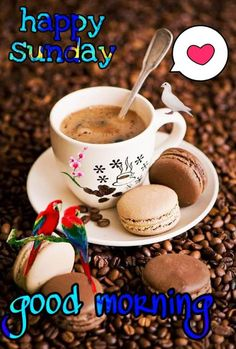 Good Morning Sunday Photos Good Morning Sunday Pictures, Happy Sunday Hd Images, Happy Valentine Images, Good Morning Flowers Pictures, Lovely Good Morning Images, Beautiful Morning Quotes, Good Morning Happy Sunday, Latest Good Morning, Good Morning Picture