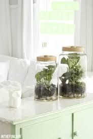 indoor gardens for apartments - Google Search