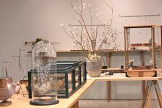info Accessories Display, Jewellery Display, General Goods, Display Design, Display Shelves, Craft Fairs, Apothecary, Jewelry Stores, Herbalism
