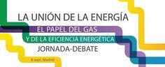 Debate en Madrid sobre el gas y la eficiencia energética - http://www.renovablesverdes.com/debate-madrid-gas-la-eficiencia-energetica/