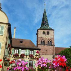 11 mooie dorpjes in de Elzas – valiezen House Colors, Notre Dame, Travel Guide, Road Trip, France, Vacation, Mansions, House Styles, Building