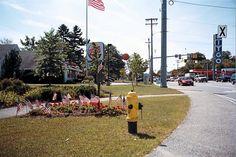 5 Points, 18 Flags - Veterans Circle by Elayne Star