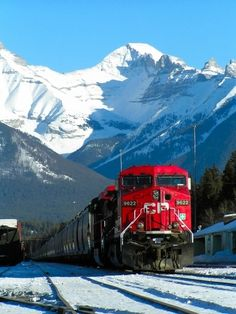 What is more beautiful than a train going through Banff National Park ~ Alberta, Canada