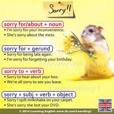 All about 'Sorry'. - Learn and improve your English language with our FREE Classes. Call Karen Luceti 410-443-1163 or email kluceti@chesapeake.edu to register for classes. Eastern Shore of Maryland. Chesapeake College Adult Education Program. www.chesapeake.edu/esl.