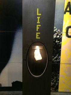 elements-life
