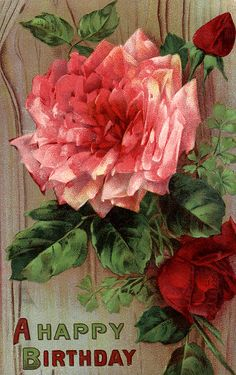 Victorian Rose Birthday Postcard - Miss Mary's Victorian and ...