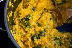 Red lentil and butternut squash curry stew