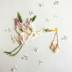 http://floraforager.com