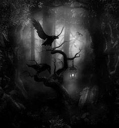 #raven queen