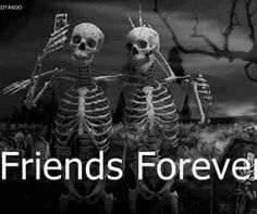 Get the Best and most promising Happy Friendship Day wishes and messages for your best friends with funny and Romantic wishes greetings for you. Best Friends Forever, My Best Friend, Besties, Bestfriends, Plus Belle Citation, Dp For Whatsapp, Whatsapp Group, Whatsapp Wallpaper, Happy Friendship