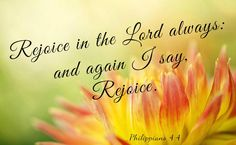 Yet I will rejoice in the LORD, I will joy in the God of my salvation. Habakkuk 3:18