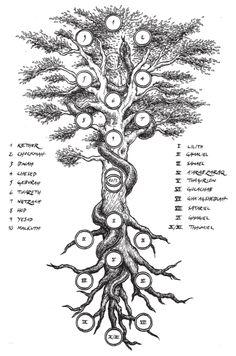 "The Tree of Life and Death from Alberto Brandi's book ""La Via Oscura"", Illustration by Timo Ketola"