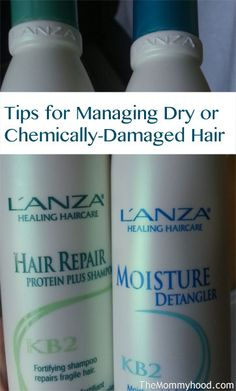 how to help fix dry, damaged hair.