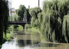 podul maria tereza sibiu - Căutare Google Sibiu Romania, River, Outdoor, Google, Outdoors, Rivers, Outdoor Games