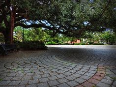 An old live oak tree forms a canopy over the beautiful, circular pattern of cobblestones in Congo Square located in Louis Armstrong Park in Treme, New Orleans.
