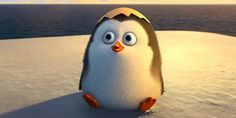 Baby Private is so cute! :)  Read my #MovieReview--> Penguins of Madagascar ~ Light, fun and a zippy movie http://njkinny.blogspot.in/2014/11/movie-review-penguins-of-madagascar.html