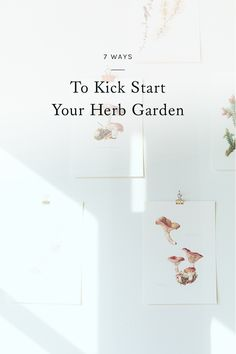 looking to flex your green thumb this summer? click through for 7 ways to kick start your herb garden. Lush Garden, Herb Garden, Indoor Garden, Garden Plants, Home And Garden, Do It Yourself Home, Love Flowers, Garden Planning, Garden Inspiration