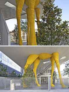Giraffe Childcare Center Hondelatte