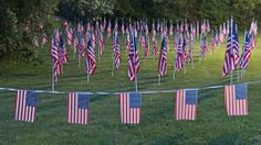 memorial day 2014 zion il