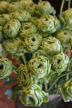 Flowers in Honeydew Color