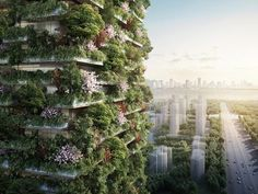 China Welcomes Asia's First Vertical Forest | Architectural Digest
