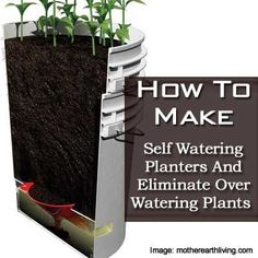 How To Make Self Watering Planters And Eliminate Over Watering Plants