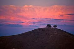 """Sunrise behind """"Two Trees"""" in Ventura, California. Ventura Beach, Ventura California, Ventura County, California Dreamin', Ventura Homes, Two Trees, Beautiful Sunrise, Vacation Spots, Cool Places To Visit"""