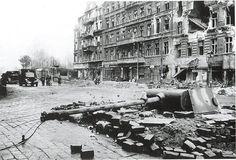 rue, destruction
