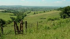 View from Haresfield into the Severn Vale, Gloucestershire