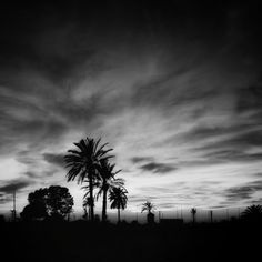 Paisaje en BN/D©
