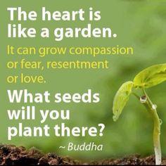 The heart is like a garden.