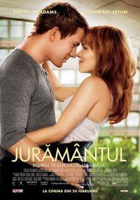 The Vow 2012 Online Subtitrat in Romana