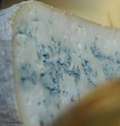 C'est le 1er fromage né des montagnes du Haut-Jura et 3ème AOP du Jura : le Bleu de Gex | Jura, France | photo A. Dalloz | #JuraTourisme