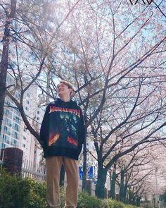 Chen album april and a flower