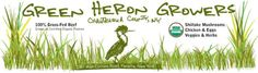 Green Heron Growers Logo and Header: Visit our certified organic farm at 2361 Wait Corners ROad Panama, NY 14767 - The farm store is on-site. Get fresh produce, free range chickens, grass-fed beef, Shiitakes & maybe catch a glimpse of a resident Heron! #WNY #GrassFed