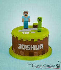 only I would make it square instead.a round minecraft cake just doesn't make sense to me Minecraft Torte, Minecraft Birthday Cake, 7th Birthday, Birthday Cakes, Pastel Minecraft, Cake Cookies, Cupcake Cakes, Cake Paris, Cake Simple