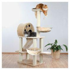 Dieser Kratzbaum Allora, 176 cm aus der DreamWorld Serie hat einen Plüschbezug und die Stämme sind mit Natursisal umwickelt. Kratzbäume schützen Möbel und Teppiche vor den natürlichen Kratzgewohnheiten der Katze und sind für Katzen jeden Alters geeignet. Artikeldetails: mit Plüsch-Bezug und Sisalkratzfläche Stämme mit Natursisal umwickelt gepolsterte Liegeplatte Höhle mit Plüsch ausgestattet mit Spielzeugen am Band Farbe: beige Der Kratzbaum besteht aus folgenden Bauteilen: 1 Bodenplatte, 77…