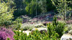 Heather garden Somosaguas, Madrid: Urquijo-Kastner