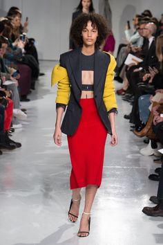 Calvin Klein   Ready-to-Wear - Autumn 2017   Look 17