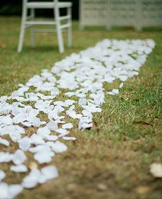 Goldcoastweddingeventhire Gold Coast Wedding Ceremony Petal Aisle Decor Beach