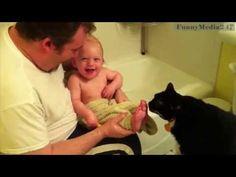 Top 70 funniest cat videos - http://positivelifemagazine.com/top-70-funniest-cat-videos/