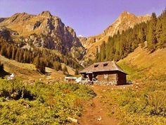 Cabin, France, Country, House Styles, Building, Places, Nature, Workshop, Autumn