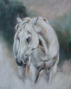 portrait in pastel on velourspaper white dream Pastel Art, Horse Art, Four Legged, Art Drawings, Van, Portraits, Horses, Deviantart, Animals