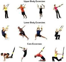Image result for trx exercise images