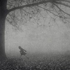 Spooky night fog