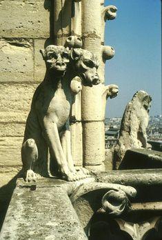 paris-gargouille-cerbere.jpg (263437 octets)