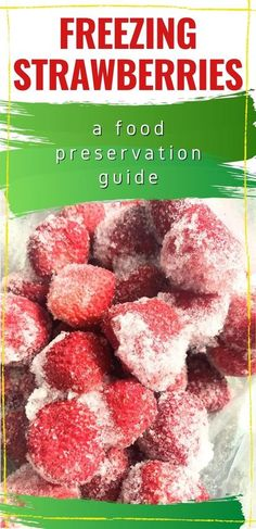 Our strawberry patch from a few years ago has sent out runners and now we have volunteer strawberries EVERYWHERE! Using these food preservation tips for freezing strawberries we will have them all year round! #selfsufficient #foodpreservation Freezing Strawberries, Frozen Strawberries, Self Sufficient, Strawberry Patch, All Year Round, Preserving Food, Preserves, Preserve, Pickling