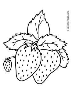 Nice Strawberries Fruits coloring pages simple for kids, printable free is part of Fruit coloring pages - Fruit Coloring Pages, Easy Coloring Pages, Printable Coloring Pages, Free Coloring, Coloring Pages For Kids, Coloring Books, Kids Coloring, Vegetable Coloring Pages, Fairy Coloring