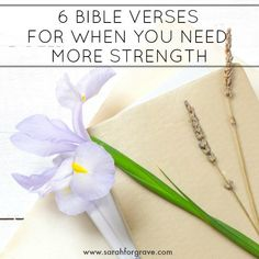 If you're feeling physically, emotionally, or spiritually weak, these Bible verses will remind you where your true strength comes from. Prayers For Hope, Hope In God, Words Of Hope, Bible Prayers, Great Bible Verses, Bible Verses For Women, Bible Verses About Faith, Spiritual Encouragement, Daily Encouragement