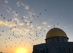 Palestine Quotes, Dome Of The Rock, Islamic Paintings, Love In Islam, Beautiful Mosques, Allah Islam, Deep Words, Jerusalem, Final Fantasy